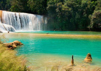 Photo de Agua Azul